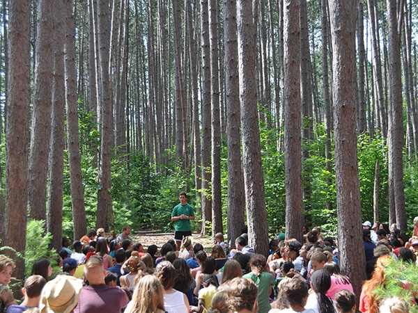 Campers gathering in the red pine forest in the woods of new hampshire