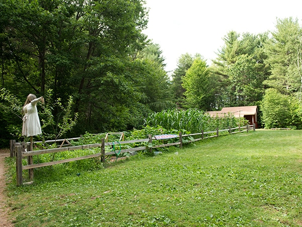 Organic farm at New Hampshire kids summer camp