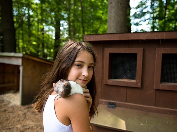 Girl with domesticated rat on the farm